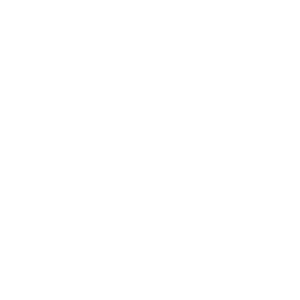 party-0